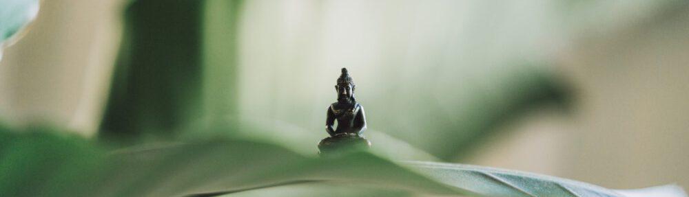Zen in Würzburg
